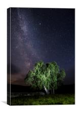 Elan Valley MilkyWay over Welsh Sheep Pens, Canvas Print