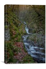 Dolfolau Magical Waterfall, Elan Valley, Canvas Print