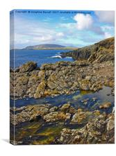 Coastal Forms at Sumburgh Head, Canvas Print