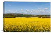 Springtime in East Sussex, Canvas Print