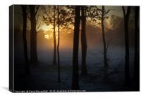 Sun Snow and Fog                               , Canvas Print