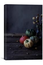 Decorative pumpkins, Canvas Print