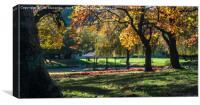 Autumn Trees, Canvas Print