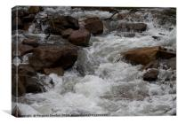 Alpine stream - Ovens River, Bright. Australia. , Canvas Print
