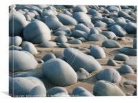 Westward Ho! beach with rocks, Canvas Print