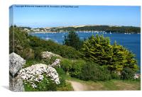 The Fal from St Mawes (1), Canvas Print
