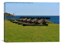 St Mawes Cannons, Canvas Print