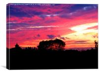 """""""Red Sky at Night"""", Canvas Print"""