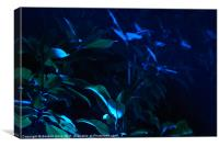 In the Neon Garden, Canvas Print