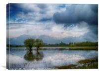 Somerset Levels Flood, Canvas Print