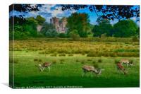 Deer at Powderham Castle          , Canvas Print