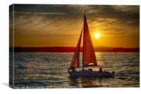 Red Sailed yacht at Sunset, Canvas Print