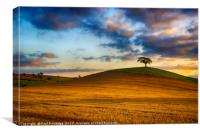 Golden Hour Landscape, Canvas Print