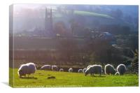 Sheep at Widecombe-in-the-Moor , Canvas Print