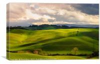 Tuscany countryside, Canvas Print