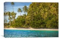 The wild nature of Bacuit Archipelago, Canvas Print