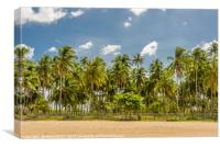 Forest of palm trees, Canvas Print