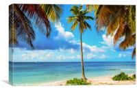 Caribbean landscape, Canvas Print