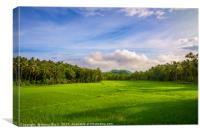 Countryside of Bohol, Canvas Print
