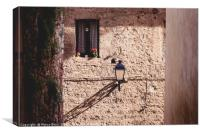 Detail of a facade in Colle val d'Elsa, Canvas Print