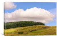 Nature of Cairngorms National Park, Canvas Print
