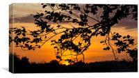 Forever Autumn , Canvas Print