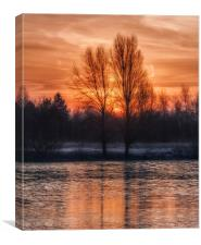 Winter Dawn, Canvas Print