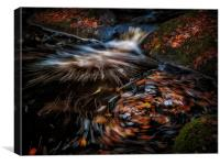 Autumn leaves River Burbage, Canvas Print
