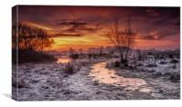 Winter dawn flood meadow Staffordshire, Canvas Print