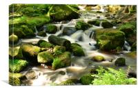 Wyming Brook in Sheffield (UK), Canvas Print