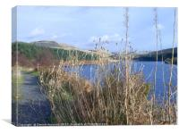 Grasses at Crowden Reservoir , Canvas Print