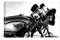 Triton British Cafe Racer                      , Canvas Print