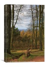 The View from Clent, Canvas Print