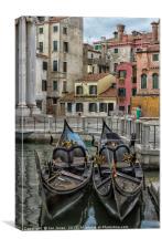 Gondola Park, Venice, Canvas Print