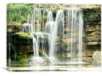 Highfields Waterfall, Canvas Print