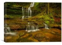 Scalebor Force Waterfall, Canvas Print