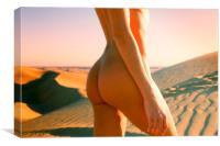 Nude Torso, Canvas Print