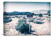 No Trespassing in Deserted Desert, Canvas Print