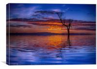 Lone Tree on a Beautiful Sunrise, Canvas Print