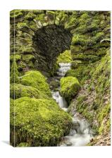 Water Flowing under the Arch at Stock Gryll force , Canvas Print