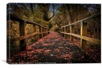 Lee Valley Park near Waltham Cross, Canvas Print