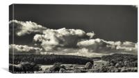 Clear View over Bradgate Park, Canvas Print
