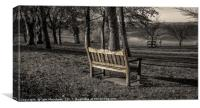 A Place to Sit and Contemplate Life, Canvas Print