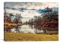 Bradgate Park in Autumn, Canvas Print