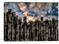Fenced In, Canvas Print