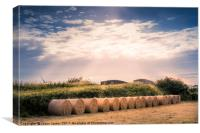 Round Hay Bales, Canvas Print