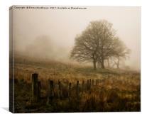 Misty Trees, Canvas Print