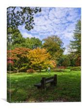 Westonbirt Arboretum, Canvas Print