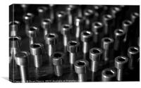 Line up, line up, soldier nuts., Canvas Print