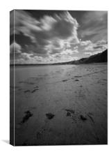 The Beach at Filey, Canvas Print